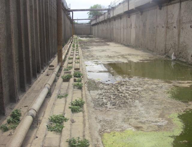 Промышленный басейн для разведения рыб